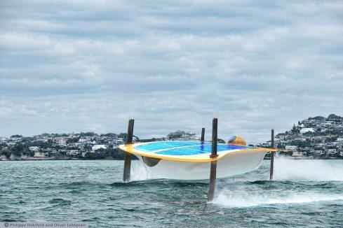 water-strider (c)DHL